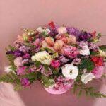 פרחים מודיעין